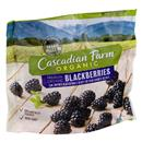 Cascadian Farm Organic Blackberries